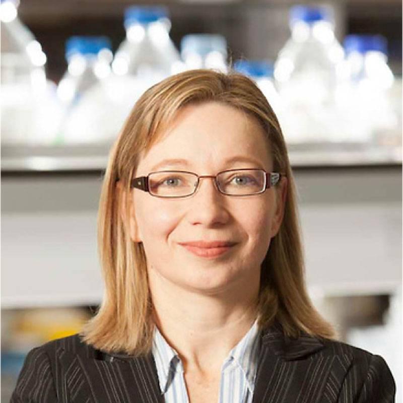 Dr. Eva Szegezdi