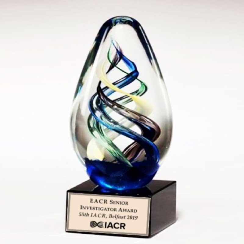 EACR Junior and Senior Investigator Awards